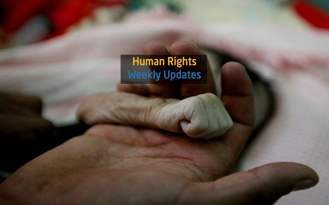Human Rights Update from (20 November to 26 November 2018)